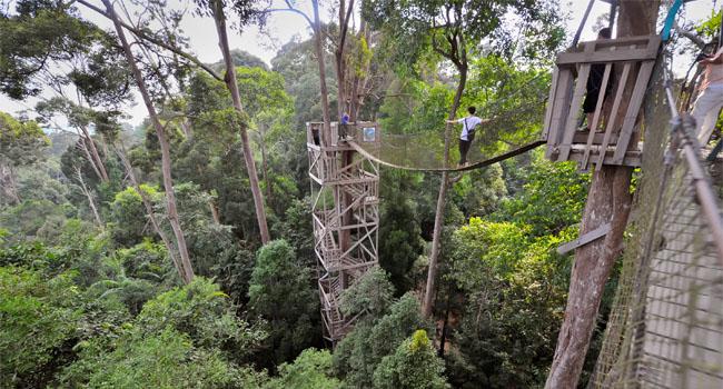Hasil gambar untuk Bukit Bangkirai