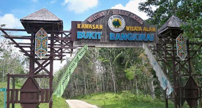 Bukit Bangkirai Kalimantan Timur Get Borneo