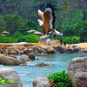 Sinka Island Park, Kalimantan Barat